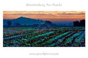 glastonbury_tor_fields.jpg