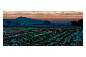 700_1330_Glastonbury Fields-c9.jpg